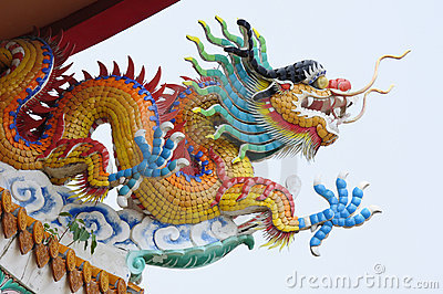 Chinese yellow dragon