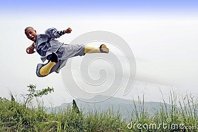 Chinesisches kung Fu