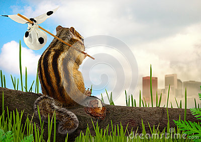 Chipmunk emigrant, ecology concept