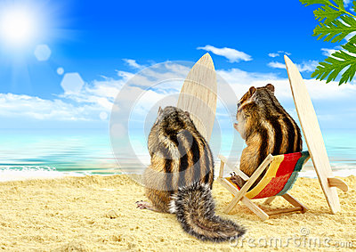 Chipmunks surfers on the beach with surf boards