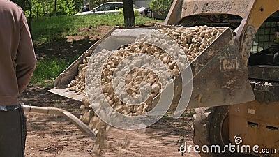 Skid steer loader unloads limestoone gravel at construction area outdoors stock footage