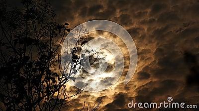 Chmura ruch z wiatrem zbiory