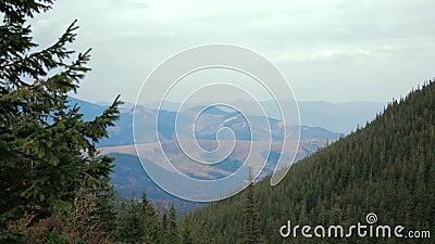 Chmurny g?ra krajobraz z zielonym sosnowym lasem na przedpolu zbiory wideo
