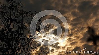 Chmury ruszają się zbiory