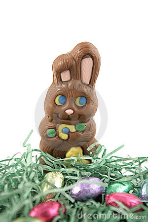 Free Chocolate Bunny In Nest Stock Photography - 1825142