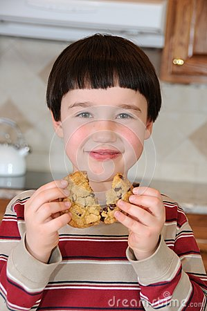 Chocolate Chip Joy