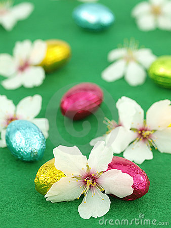 Chocolate Easter eggs with spring flowers