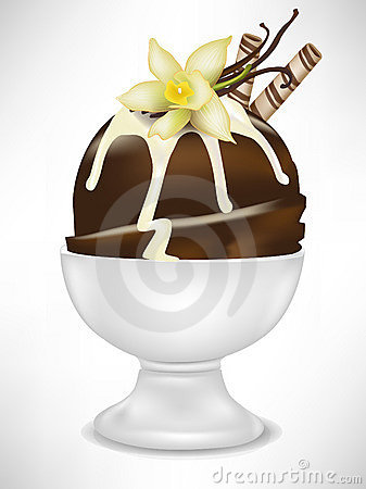 Chocolate ice cream with vanilla in bowl