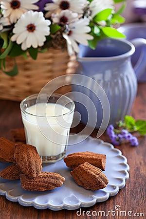 Chocolate madeleine cookies