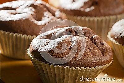 Chocolate muffin in cupcake