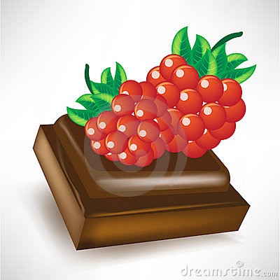 Chocolate piece with berry fruit