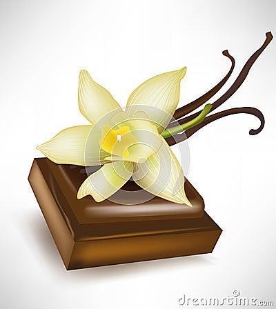 Chocolate piece and vanilla