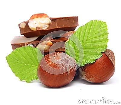 Chocolate pieces with hazelnuts