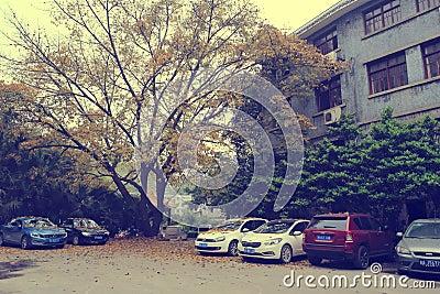 Chongqing institute of socialism