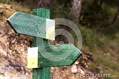 Choose direction