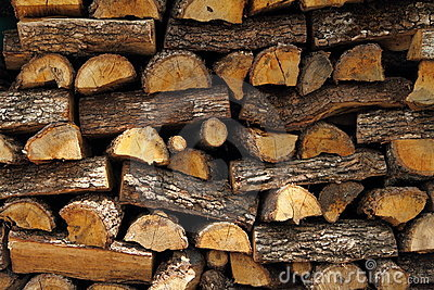 Chopped logs