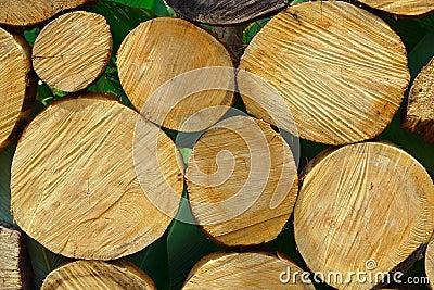 Chopped Wood and Logs