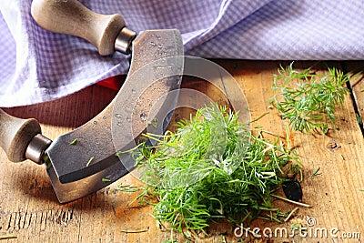 Chopping fresh dill