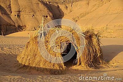 La Vida del Desierto en Imagenes