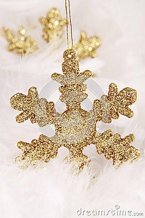 Free Christmas Stock Photography - 7075322