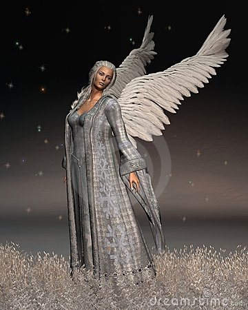 Free Christmas Angel On A Winter Night Royalty Free Stock Image - 12075346