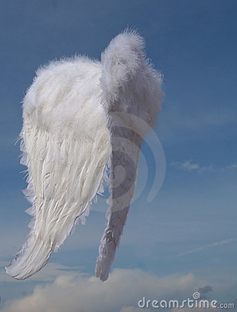 Free Christmas Angel Wings Royalty Free Stock Images - 533619