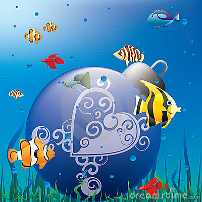 Free Christmas Aquarium Royalty Free Stock Images - 12151359