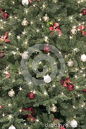 Free Christmas Background Royalty Free Stock Photo - 47685
