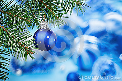 Christmas ball on blue spruce branch