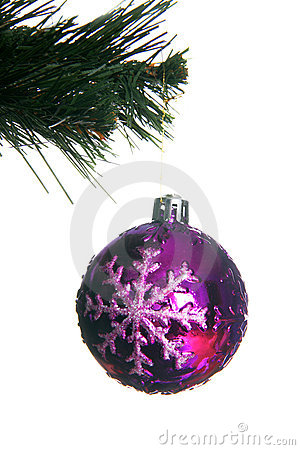 Christmas ball in fir isolated on white