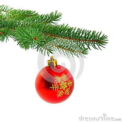 Christmas ball on fir pine branch