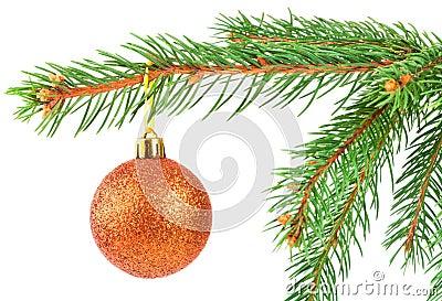 Christmas ball on a fir tree branch