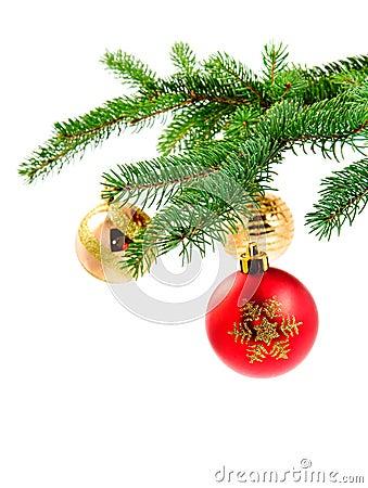 Christmas ball hanging on a fur tree