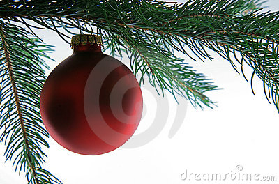 Christmas Ball on Tree, closeup