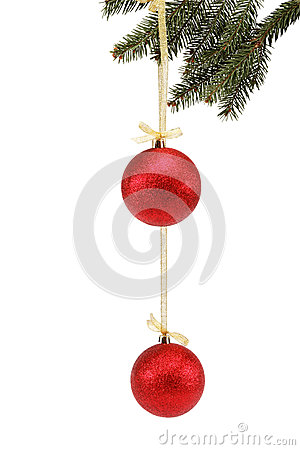 Christmas balls on fir branch isolated.