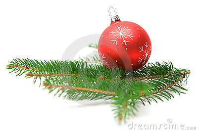 Christmas Bauble on Fir Branch
