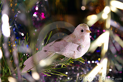 Christmas bird
