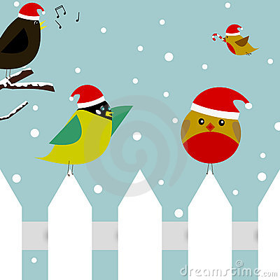 Free Christmas Birds Stock Photo - 17118100