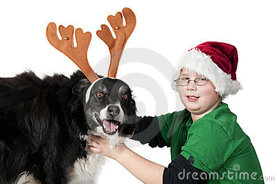 A Christmas boy and his reindeer dog