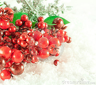 Christmas branch of berries with a silver