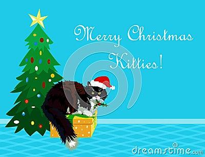 Christmas card cat  with mistletoe