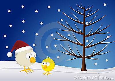 Christmas - Chick and rooster
