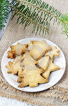 Christmas cookies under fir branch.