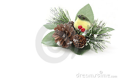 Christmas decoration with a bird