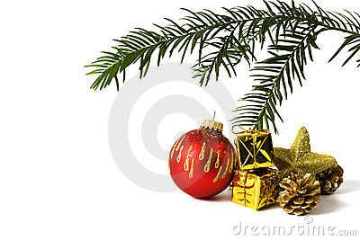 Christmas decoration and fir twig isolated