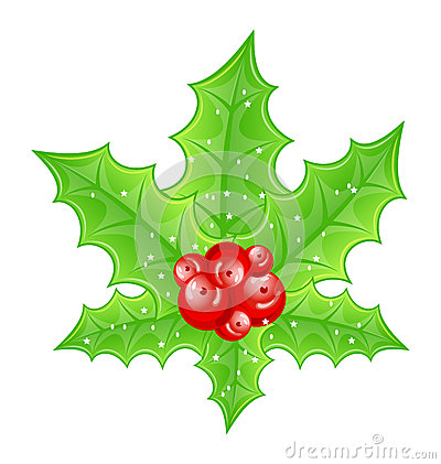Christmas decoration holly berry branches