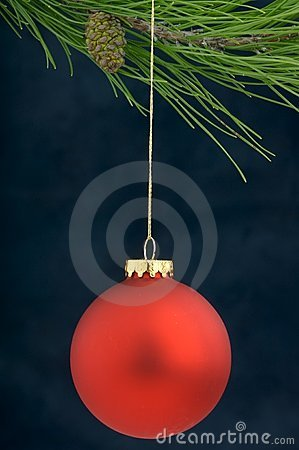 Christmas Decoration on a tree