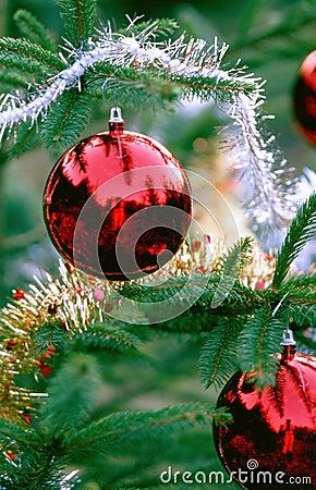 Free Christmas Decorations Royalty Free Stock Photos - 32008