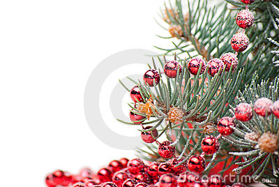 Christmas decorations with branch of tree on white