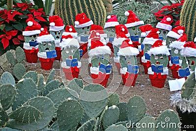 Christmas in the desert.